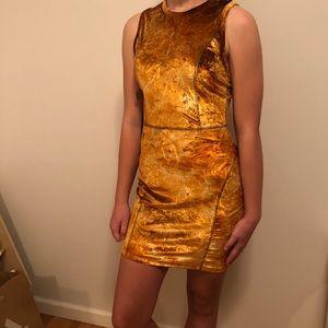 Aritzia Wilfred NWT Velvet Dress - Size M